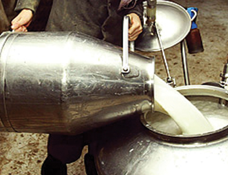 Raw Milk Producer Wins Critical Victory; Revolutionary Fish Hatchery Reduces Toxins