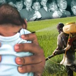 Pesticide Link in Microcephaly Cases