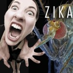 The Zika Virus Scare
