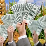The U.S. Congress: GMO Sellouts