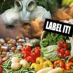 Hidden Toxins in Everyday Products Should Be Disclosed