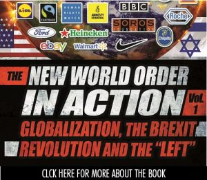 New World Order in Action book cover