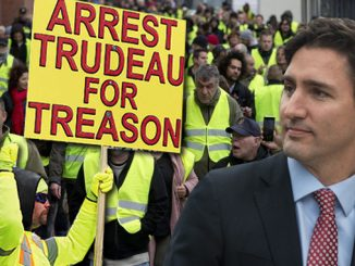 Yellow Vest Movement in Canada