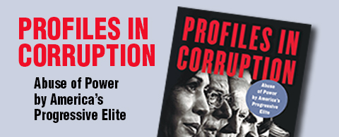 Profiles in Corruption, Schweizer book