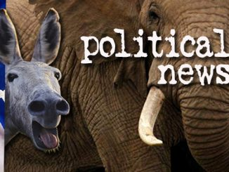 Politics articles banner
